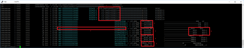 ESXi RDM (Raw Device Mapping) 설정